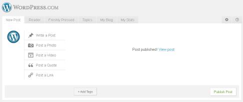 cara membuat blog di wordpress klik view post